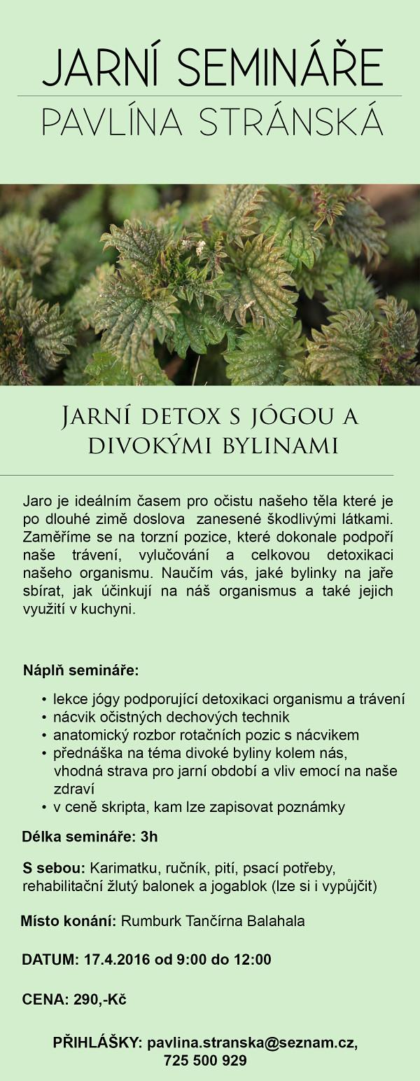detox s bylinami (1)